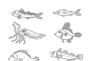 Sea dwellers and fish types
