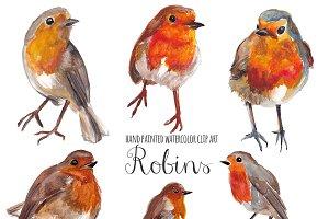 Robin watercolor clip art