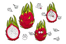 Exotic pitaya fruits, cartoon style