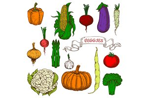 Organically grown ripe vegetables