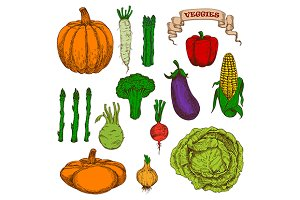 Autumnal harvest vegetables