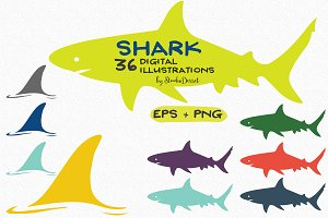 Shark - Vector Illustrations