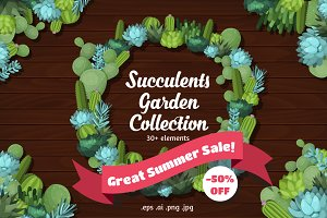 Great Summer Succulent Sale! 50% OFF