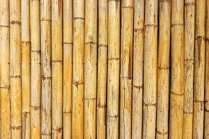 The bamboo wall background
