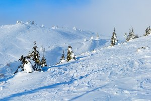 Morning winter mountain