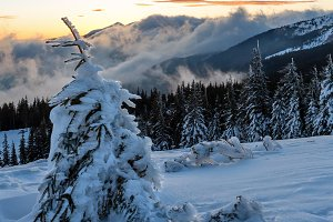 Sunrise winter mountain