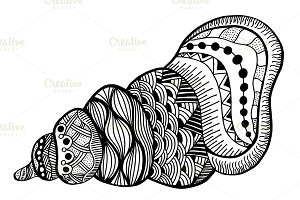 Hand Drawn seashell