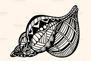 Shell with abstract pattern.