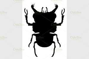 True bug silhouette