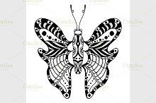 Hand drawn ornamental butterfly