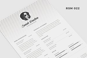 "Resume Template - ""Silver Polaris"""
