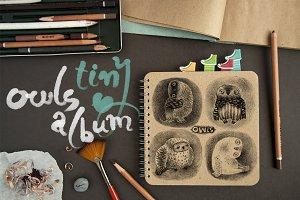Tiny Owls Album