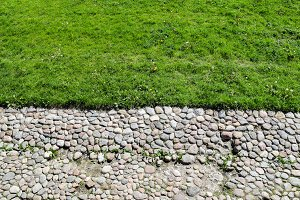 Green grass and stones