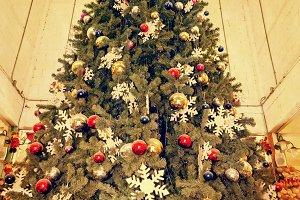 Old christmas tree