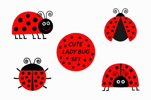 Ladybug Ladybird icon set.
