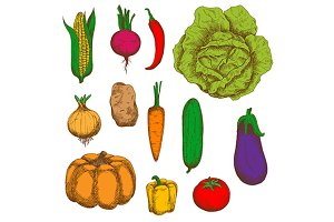 Organically grown fresh veggies