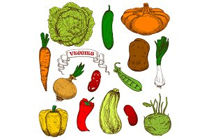 Healthful organic fresh vegetables