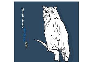 siberian eagle owl, or bubo bubo sib