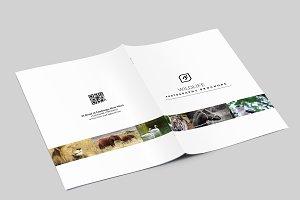 Wildlife Photography Brochure-V541