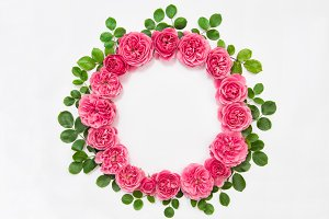 Pink rose flowers wreath