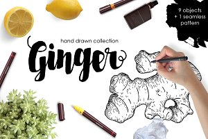 Ginger Drawing Set