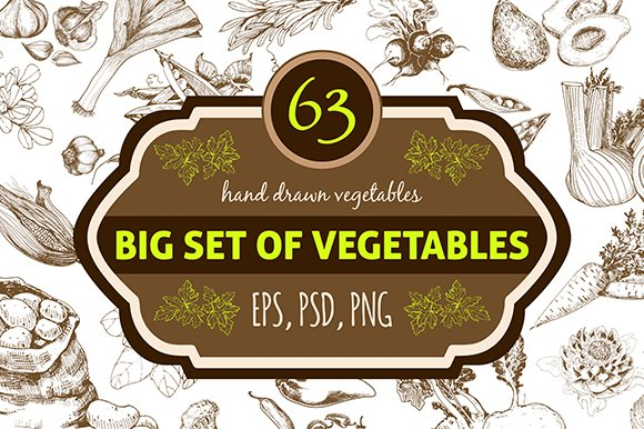 Hand drawn vegetables. Big set