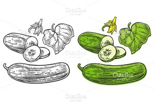 Cucumbers whole, half, slices, leaf
