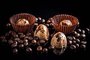 Fine chocolate pralines