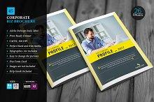 Corporate Brochure Template 45