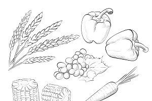 Harvest set Shavuot.