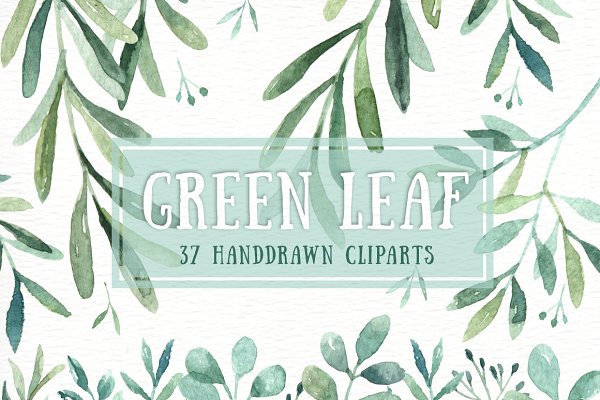Green Leaf Watercolor clipart
