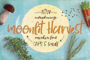 Moonlit Harvest Font Typeface