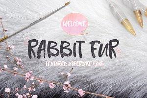 Rabbit Fur Font Typeface