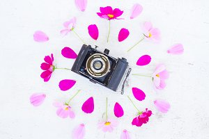 Old camera and flowers