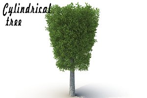 Cylindrical tree_2