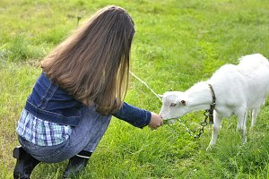Girl with goat on a meadow
