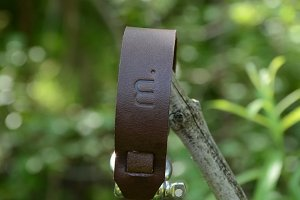 Brown Leather Bracelet on a branch