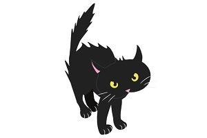 Bristled black cat