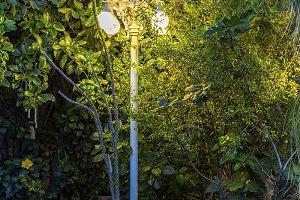 Solar decorative lamps