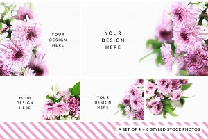 Styled Stock Photography Pack - 14