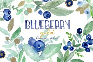 Blueberry gold. Watercolor clipart.