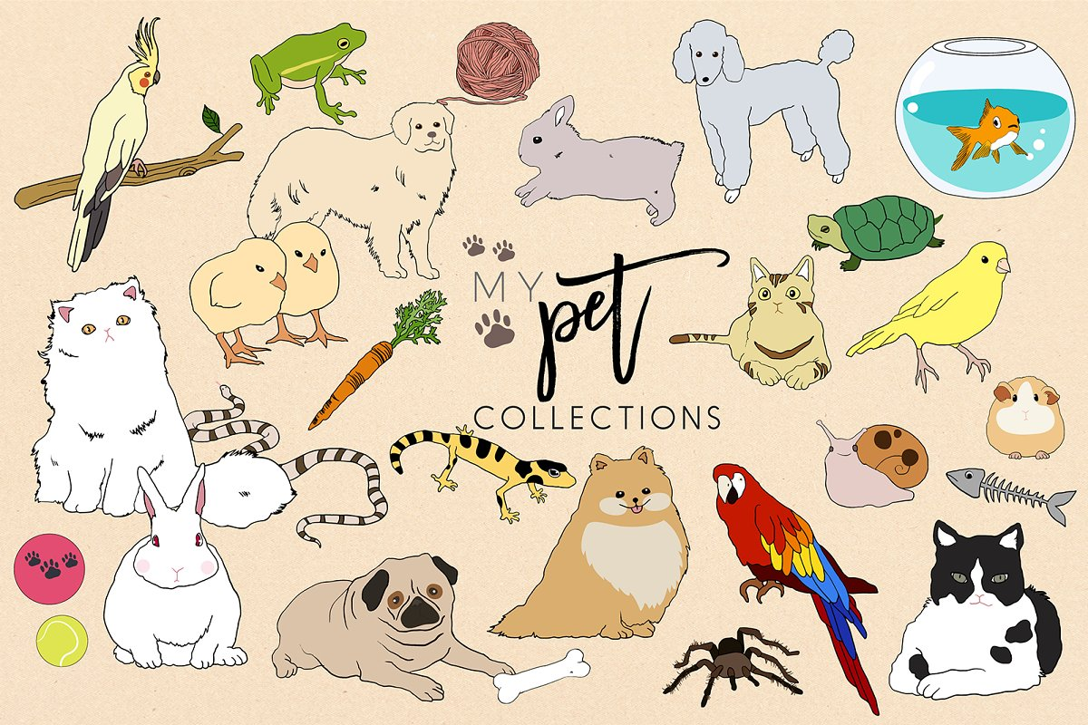 My Pet Collection ~vector & PNG~