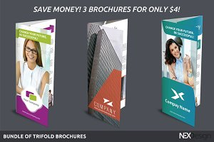 Bundle of Trifold Brochures - SK