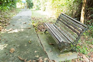 Bench along sidewalk in the park.
