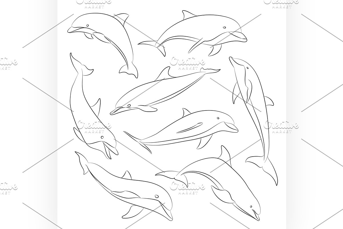 Vector hand drawn set of dolphins in Illustrations - product preview 8