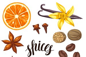 Various stylized spices set.