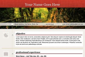 """""""Open Path"""" Template Resume"""