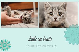 70%off!Little Cat Bundle