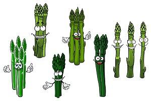 Bundles of asparagus vegetables