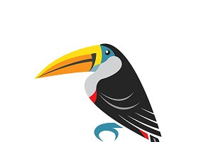 Vector images of toucan design